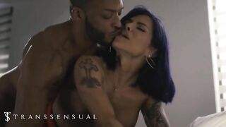 Busty tranny rides that hard cock in reverse cowgirl position